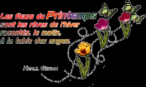 LES FLEURS DU PRINTEMPS....
